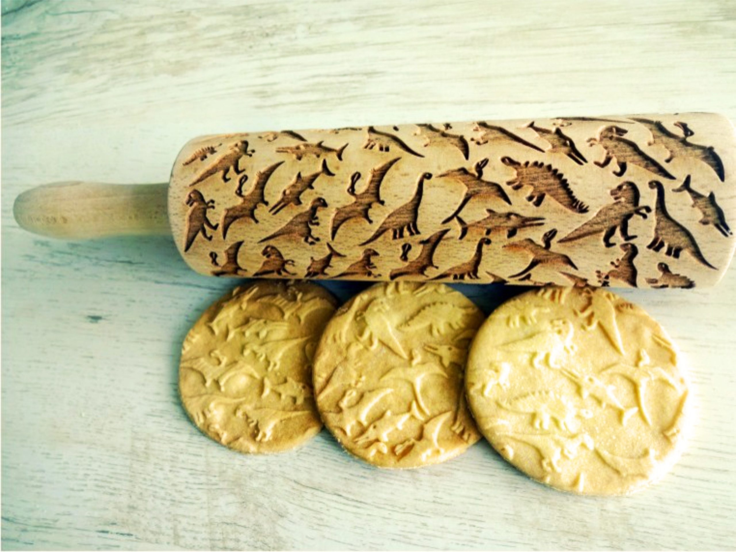 DINOSAURS Embossing Rolling Pin